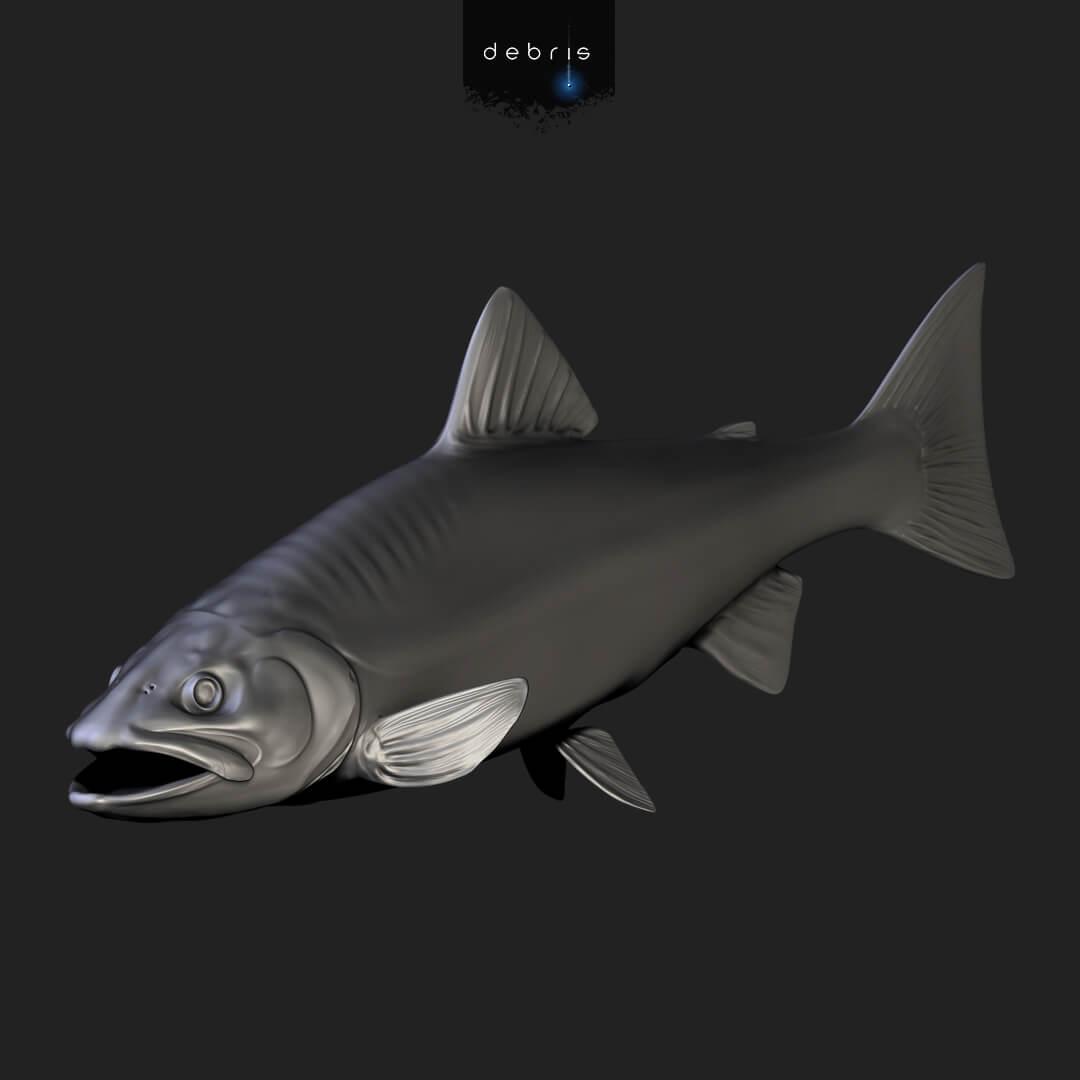 ZBrush fish